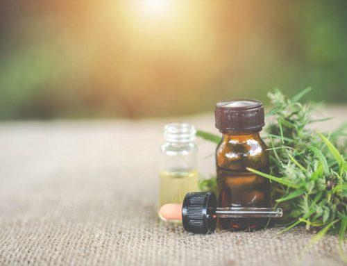 Fabricante de óleo de cannabis quer ser a primeira startup unicórnio do ramo