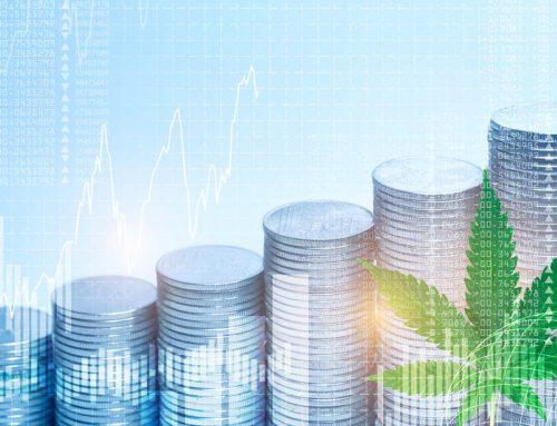 5 alternativas de bancos para empresas de cannabis