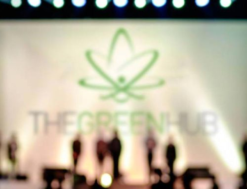 The Green Hub apresenta: CBD Thinking
