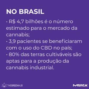 cultivo de cannabis no Brasil
