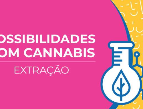 Possibilidades com a cannabis: extração