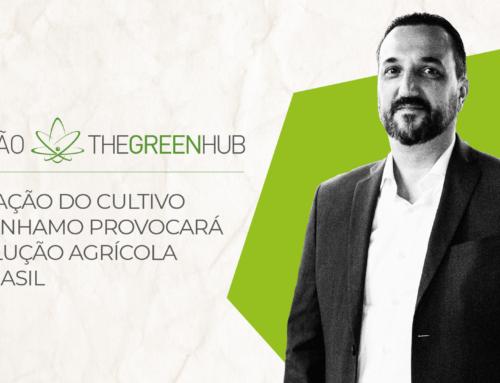 Liberação do cultivo do cânhamo provocará revolução agrícola no Brasil