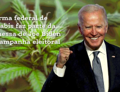 Reforma federal de cannabis faz parte da promessa de Joe Biden em campanha eleitoral