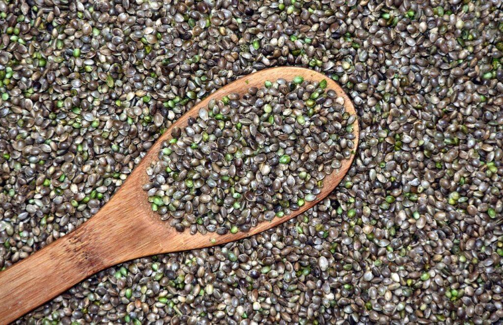 Valor nutricional da semente de cânhamo