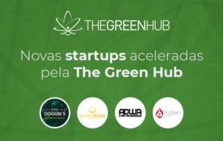 Novas startups aceleradas TGH