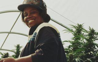 Legalização da cannabis pode trazer reparação ao povo afro descendente