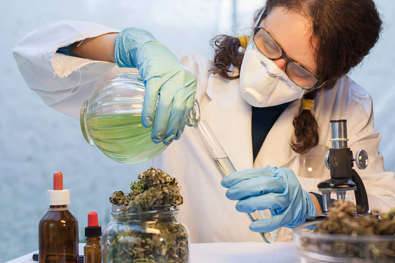 Covid-19 e Cannabis: como a planta pode ajudar