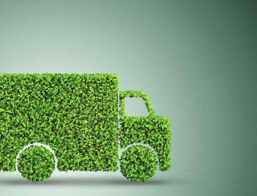 Biocombustível de cânhamo: uma alternativa sustentável