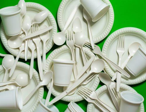 Plástico de cânhamo: uma solução sustentável e econômica