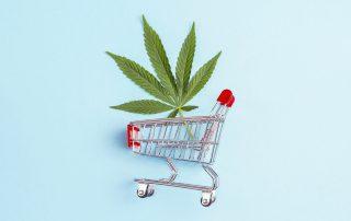 cannabis eua