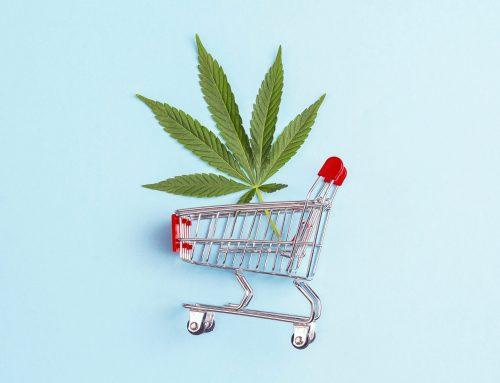 Mercado de cannabis nos EUA: quais empresas dominam?