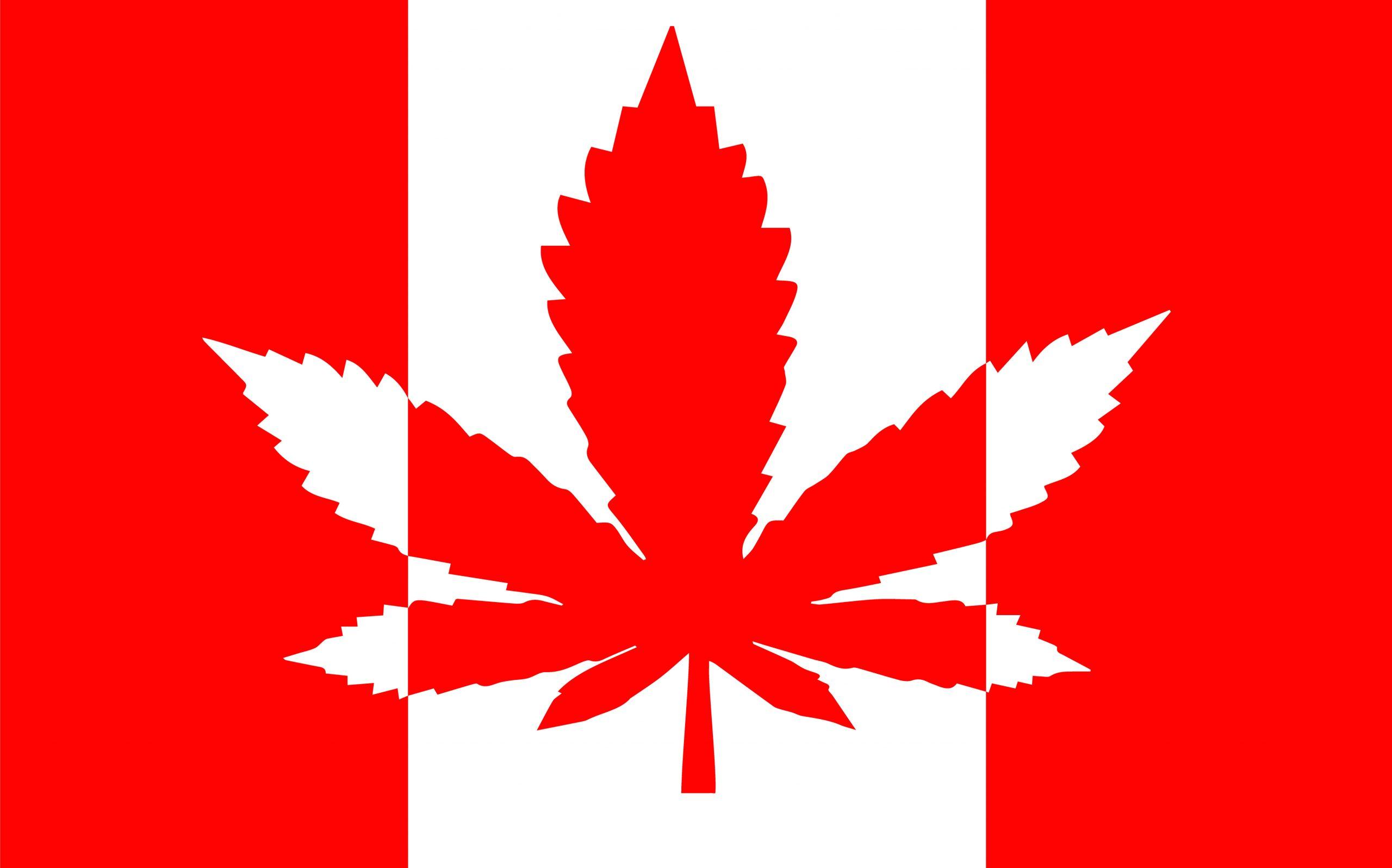 Mercado de cannabis no Canadá: três empresas promissoras