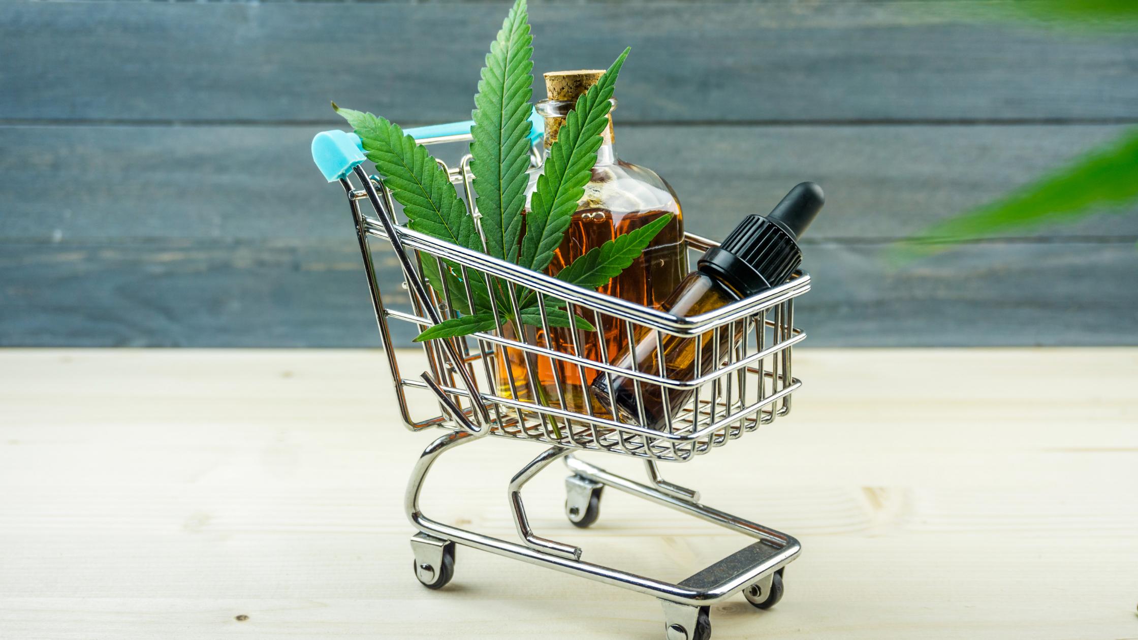 Mercado de cannabis na América Latina: 10 empresas pioneiras