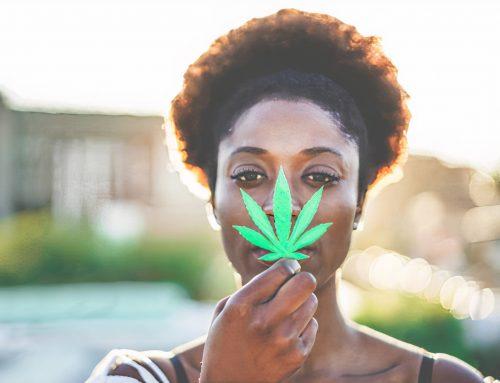Cannabis e saúde mental: uma alternativa terapêutica